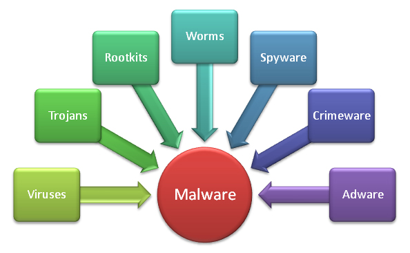 How does Paubox handle viruses or malware?