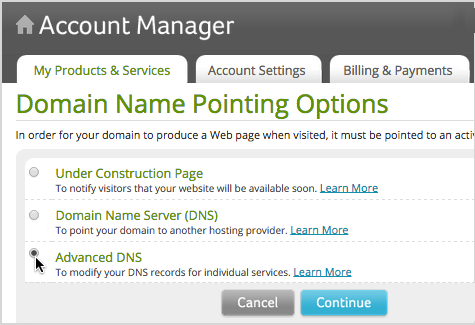 Select Advanced DNS and click Continue.